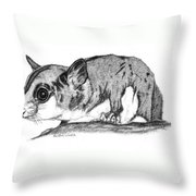 Joey Throw Pillow