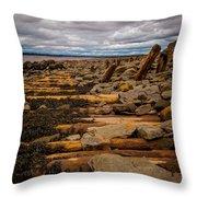 Joggins Fossil Cliffs Throw Pillow