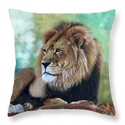 Johari Throw Pillow