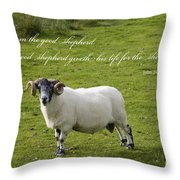 John 10v11 Throw Pillow