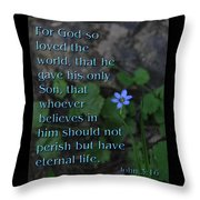 John 3 16 Throw Pillow