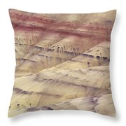 John Day Fossil Beds Throw Pillow by Greg Vaughn - Printscapes