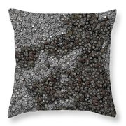 John Locke Dharma Button Mosaic Throw Pillow