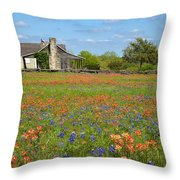 John P Cole's Cabin In Old Baylor Park Throw Pillow