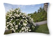 John Wingate Weeks Estate - Lancaster New Hampshire Throw Pillow