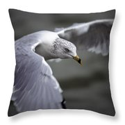 Johnathan Livingston Seagull Throw Pillow