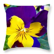 Johnny Jump Up To Spring Throw Pillow