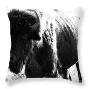 Join The Party Throw Pillow