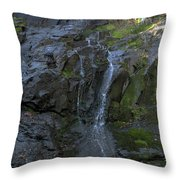 Jones Falls Throw Pillow