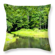Jones Mill Run Creek Throw Pillow