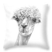 Jose Throw Pillow