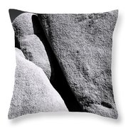 Joshua Conference Throw Pillow