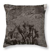 Joshua Hillside Throw Pillow