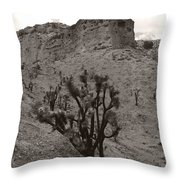 Joshua Hillside Number Two Throw Pillow