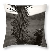 Joshua Top Over Hills Throw Pillow