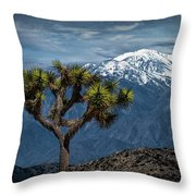 Joshua Tree At Keys View In Joshua Park National Park Throw Pillow