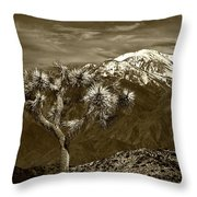 Joshua Tree At Keys View In Sepia Tone Throw Pillow