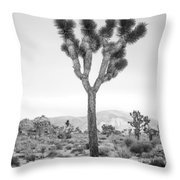 Joshua Tree Before Storm Throw Pillow