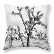 Joshua Tree Branches Throw Pillow