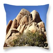 Joshua Tree Center Throw Pillow