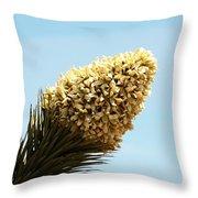 Joshua Tree Cone Throw Pillow