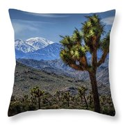 Joshua Tree In Joshua Park National Park With The Little San Bernardino Mountains In The Background Throw Pillow