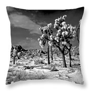 Joshua Trees In Snow Throw Pillow