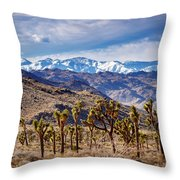 Joshua Tree National Park 2 Throw Pillow