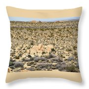 Joshua Tree National Park - Joshua Tree, Ca Throw Pillow
