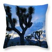 Joshua Tree Sunset Skies Throw Pillow