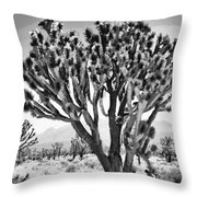 Joshua Trees Bw Throw Pillow
