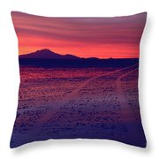 Journey In A Purple Dreamland Throw Pillow