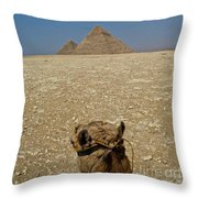 Journey Into The Desert Throw Pillow