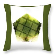 Journey Man  Throw Pillow