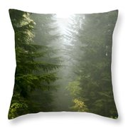 Journey Through The Fog Throw Pillow