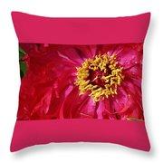 Joy In The Garden Throw Pillow