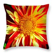 Joyful ... Throw Pillow