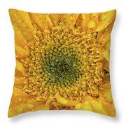 Joyful Color Nature Photograph Throw Pillow