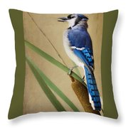 JR Throw Pillow
