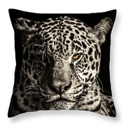 Judge, Jury And Executioner Throw Pillow
