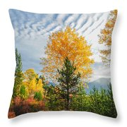 Jughandle Mountain Throw Pillow