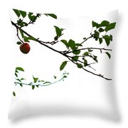 Juicy   A Tempting Photograph Of A Tasty Ripe Red Apple On A Tree  Throw Pillow