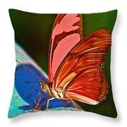Julia Heliconian Butterfly In Iguazu Falls National Park-brazil Throw Pillow