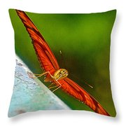Julia Heliconian Butterfly Spreading Its Wings In Iguazu Falls National Park-brazil  Throw Pillow