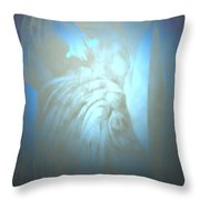 Julius  Throw Pillow