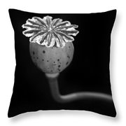 July 5 2010 Throw Pillow