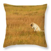 Jumping Coyote Throw Pillow