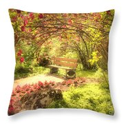 June 20 2010 Throw Pillow