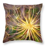 June 21 2010 Throw Pillow