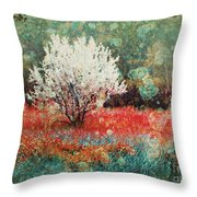 June 4 2010 Throw Pillow
